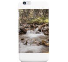 Jasper River iPhone Case/Skin