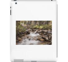Jasper River iPad Case/Skin