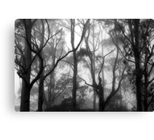The Clearest Way into The Universe is Through a Forest Wilderness Canvas Print