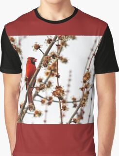 Northern Red Cardinal Graphic T-Shirt