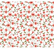 Bindweed , floral background, seamless pattern Photographic Print