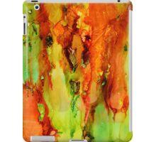 Indian Paintbrush abstract explosion! iPad Case/Skin