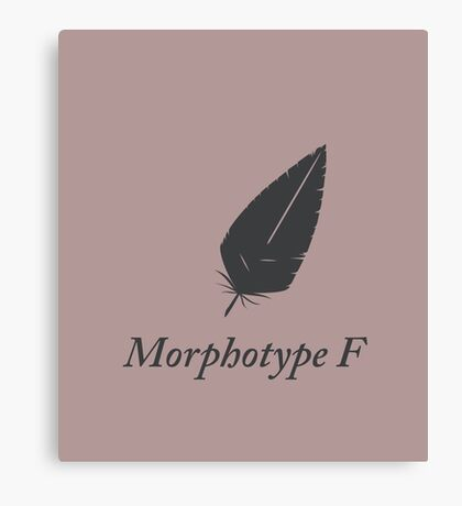 Ancient feathers type MF blank Canvas Print