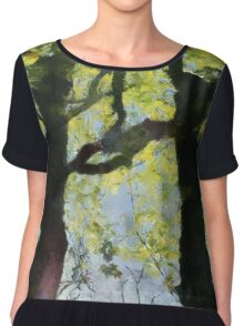 Springtime Morning With Twin Forest Trees  Chiffon Top