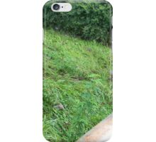 From the Bridge, Path of Flooding iPhone Case/Skin