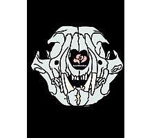 Pastel Cat Skull on Black Photographic Print
