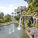 Monte Palace, Funchal, Madeira by AnnDixon