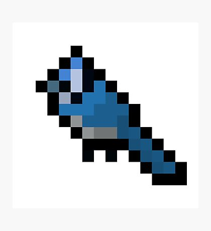 8-Bit Retro Bluejay Photographic Print