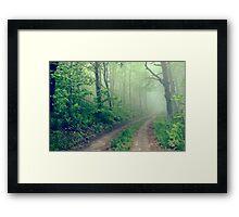 Woodland Fog Framed Print