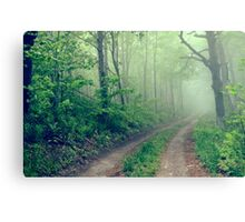 Woodland Fog Canvas Print