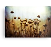 Where the Night Runs Into the Day Metal Print