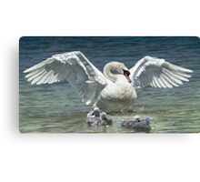 Protection Canvas Print