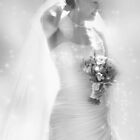 The Bride by Lyn Evans