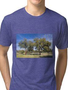 Cork oak, Monfrague Tri-blend T-Shirt