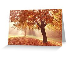 Autumn dreams Greeting Card