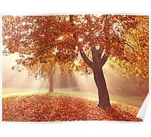 Autumn dreams Poster