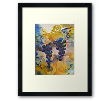 Vineyard Black Grapes Framed Print