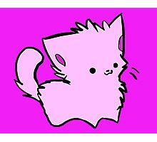 Pink Kawaii Kitty Photographic Print