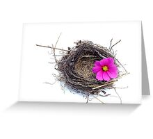 Empty nest.... Greeting Card