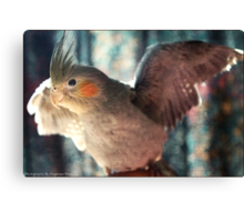 Feathered Friend Canvas Print