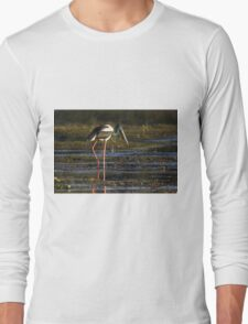 Wandering The Ponds Long Sleeve T-Shirt
