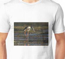 Wandering The Ponds Unisex T-Shirt