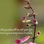 prayer  by lensbaby