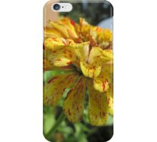 Colorful Flower #2 iPhone Case/Skin