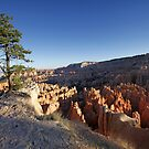 Lone tree overlook at Bryce Canyon National Park by Martin Lawrence