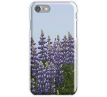 Lupine Flowers on a Cliffside iPhone Case/Skin