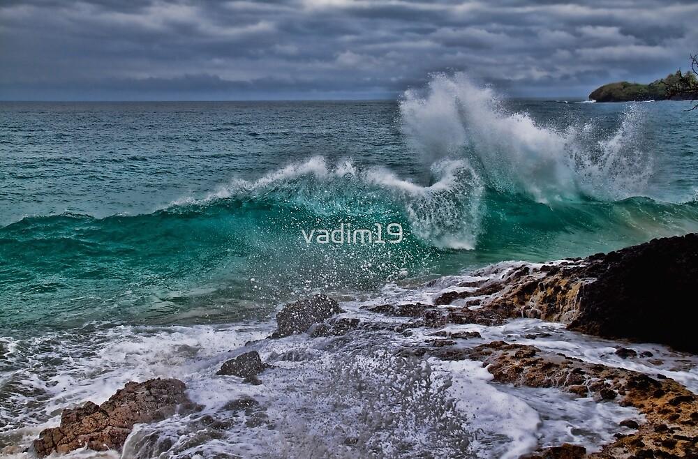 Panama. Bocas del Toro. Red Frog Beach. Crashing Waves. by vadim19