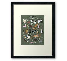 Animals Alphabet Framed Print