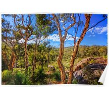 Heritage View, John Forest National Park Poster