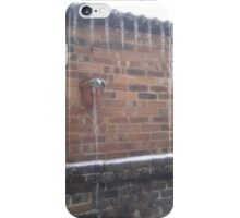 Icicles in the garden iPhone Case/Skin
