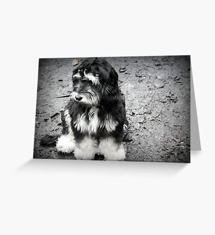 Glum Pup Greeting Card