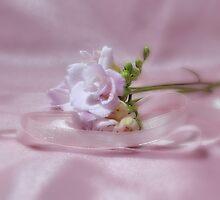 Freesia and Ribbon by AnnDixon