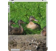 Mother and ducklings iPad Case/Skin