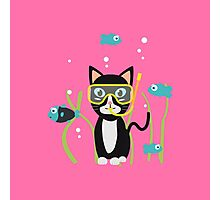 Underwater diving cat with fish Photographic Print