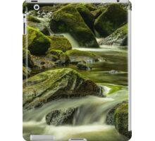 Padley Gorge iPad Case/Skin