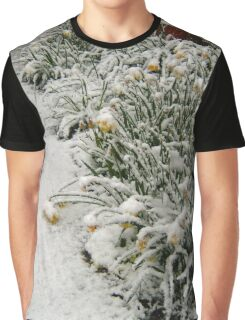 DAFFODILS IN SNOW Graphic T-Shirt