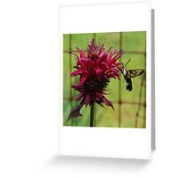 Flower With Company Greeting Card Greeting Card