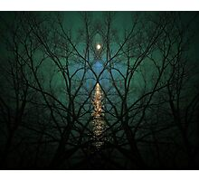 Embrace The Night Photographic Print
