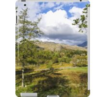 The Duddon Valley iPad Case/Skin