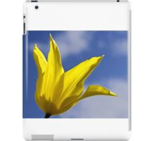 Yellow and Blue, Tulip and Sky iPad Case/Skin