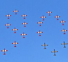 Madiba's 90th - 19 aircraft formation by Lee Jones