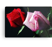A Study in Red & Pink (Greeting Card or Print) Metal Print