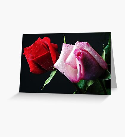 A Study in Red & Pink (Greeting Card or Print) Greeting Card