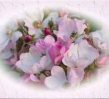 Romantic Roses by Elaine Teague