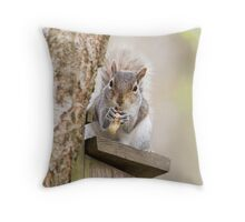 Contented Squirrel Throw Pillow