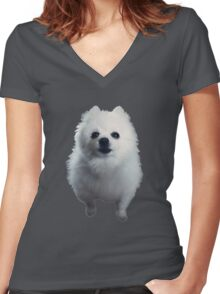 Gabe the Dog Women's Fitted V-Neck T-Shirt